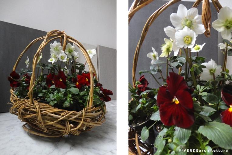 Va_15-01-22_viole rosse per te_02_IMP