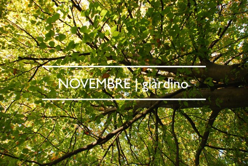 Va_novembre giardino 01