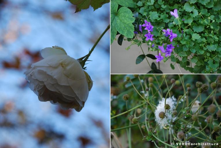 Va_novembre giardino 06_credit