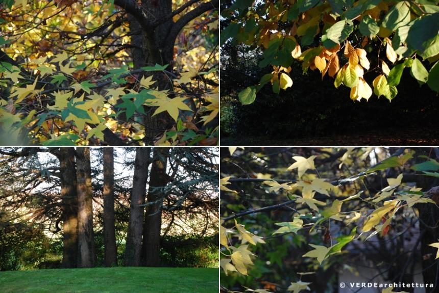 Va_novembre giardino 08_credit