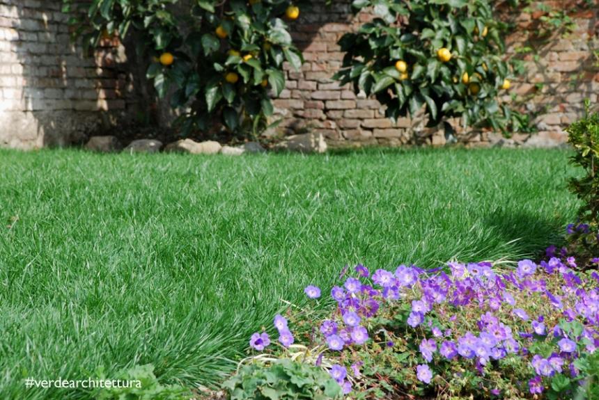Va_giardino erbe aromatiche_01