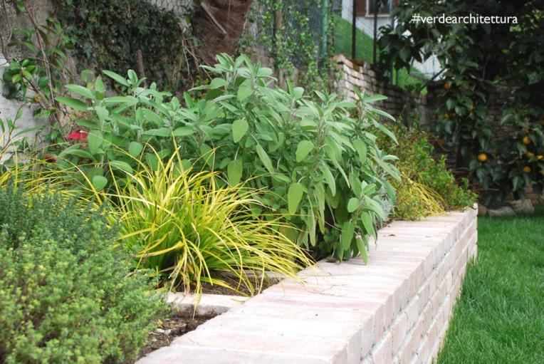 Va_giardino erbe aromatiche_03