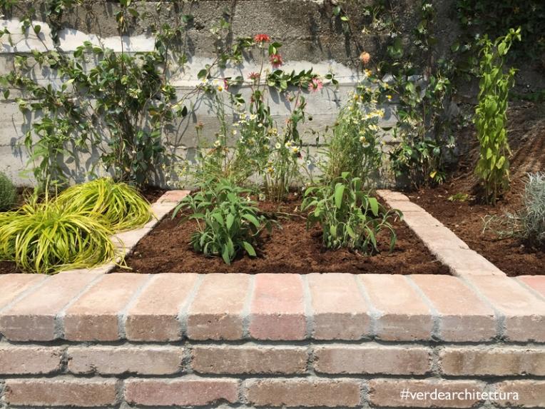 Va_il giardino delle erbe aromatiche_15-12-22_09