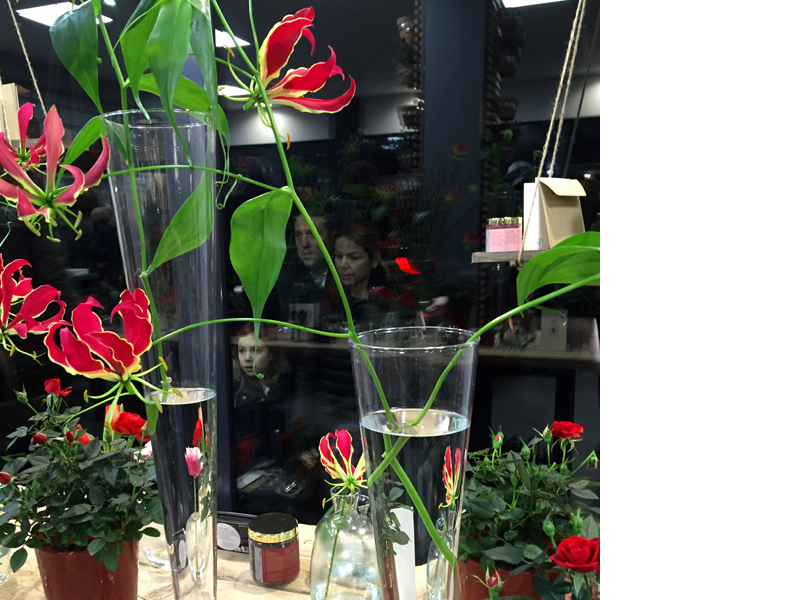 VERDEarchitettura_blog_01_anna flower designer-gloriosa rothschildiana