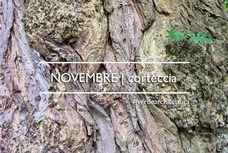 _va_testata-fb-novembre_corteccia
