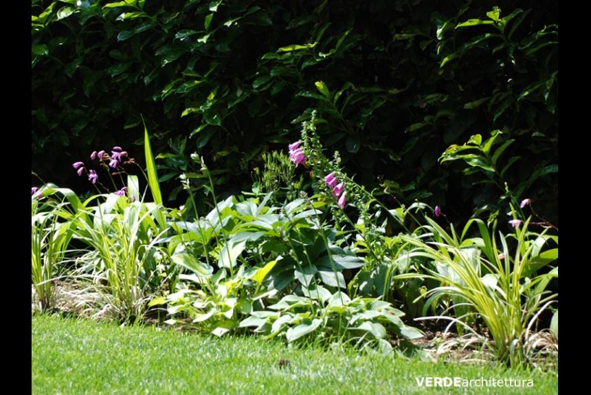 VERDEarchitettura_b_greenery01_giardino-barlassina