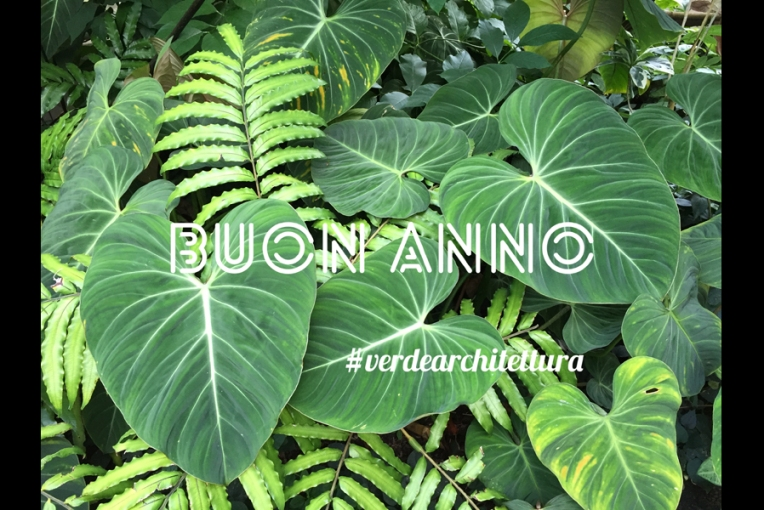 verdearchitettura_b_greenery04_felci e filodendri giardino botanico edimburgo